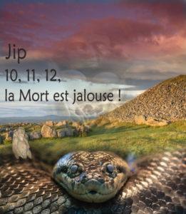 jaquette 10, 11, 12, La Mort est jalouse